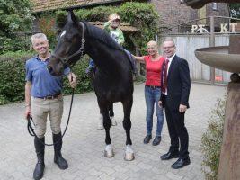 Das neue Therapie-Pferd auf dem Hof Thiesbrummel mit dem kleinen Leo.