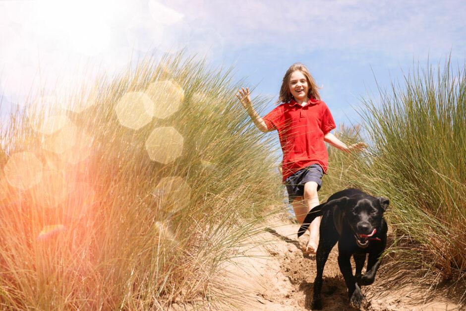 Schützen Sie Ihre Fellnase mit einer Haustierversicherung